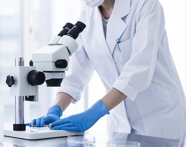 全染色体検査・微小欠失検査も可能